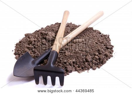 Soil For Seedling And Tools