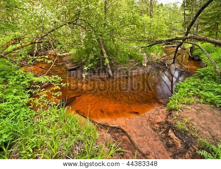 Red Sand River-bank