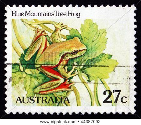 Postage Stamp Australia 1981 Blue Mountains Tree Frog, Amphibian