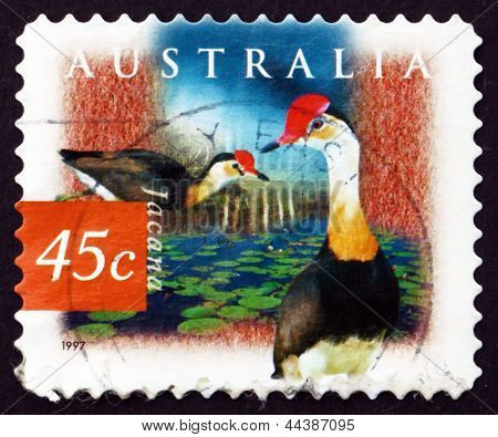 Postage Stamp Australia 1997 Comb-crested Jacana, Tropical Wader