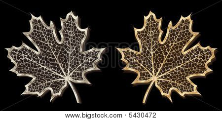 Silver And Golden Leaves