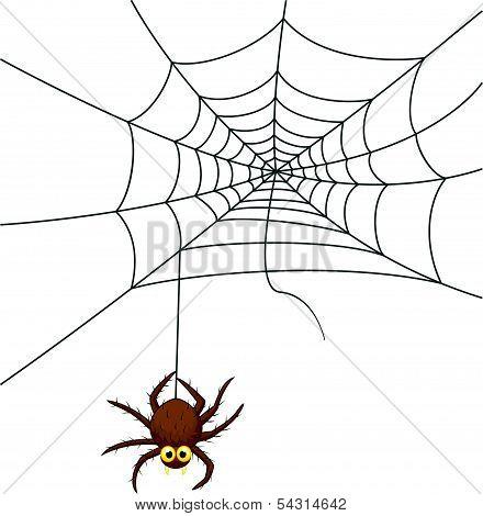Spider web cartoon