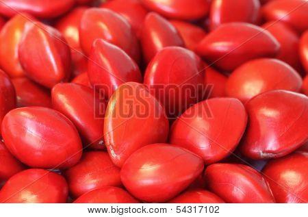 Sandalwood Seeds