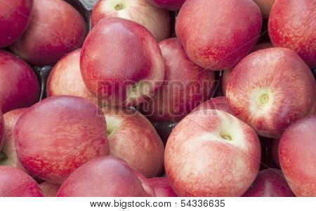 Red Plum background