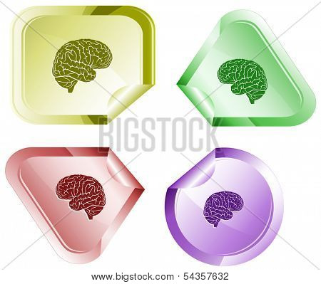 Brain. Stickers. Raster illustration.