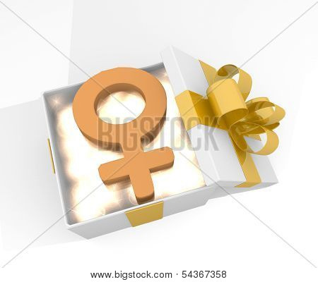 Christmas Gift Box With Woman Symnol