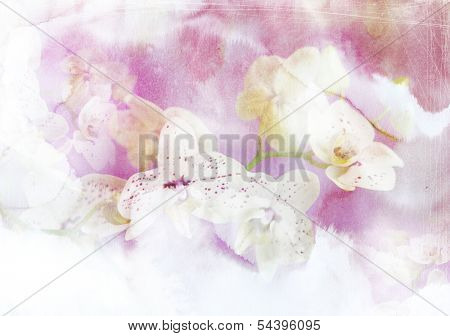 Abstract ink painting combined with orchid flowers on paper texture - floral grunge