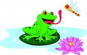 image of baby frog  - Vector illustration of Cute cartoon frog catching dragonfly - JPG