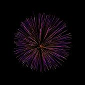 Purple Fireworks