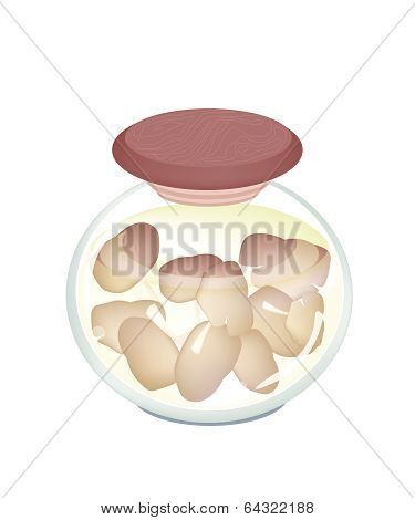 A Jar Of Delicious Marinated Oyster Mushrooms