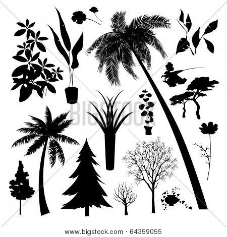 Set of silhouette of Different type  of trees and plant
