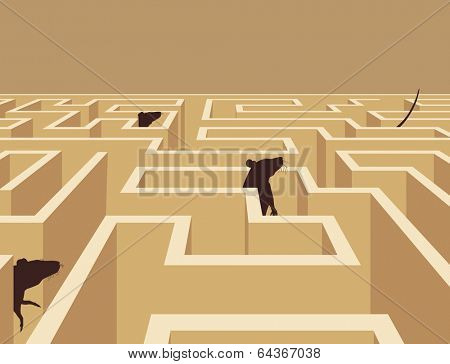 Illustration of rats wandering in a maze
