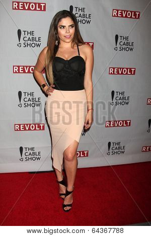 LOS ANGELES - APR 30:  Yarel Ramos at the NCTA�?�¢??s Chairman�?�¢??s Gala Celebration of Cable with REVOLT at The Belasco Theater on April 30, 2014 in Los Angeles, CA