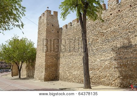 Olmedo Walls