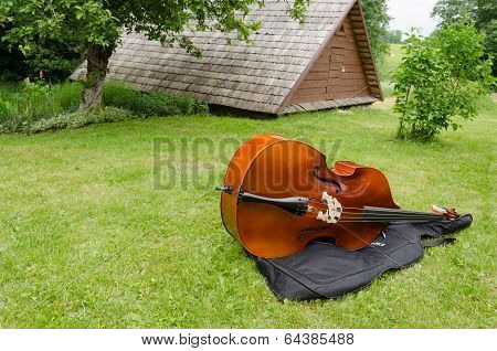 Contrabass Musical Instrument On Summer Grass