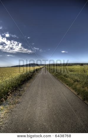 Asphalt Road Through Field