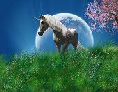 picture of moon-flower  - view of a fantastic unicorn in the field at night with big full moon - JPG