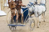 image of charioteer  - Warriors - JPG