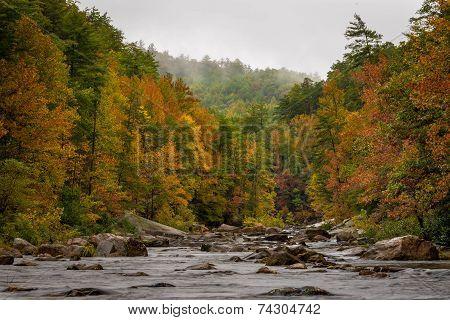 Wilson Creek Autumn 1