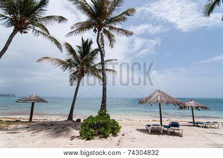 A Sunny Caribbean Beach