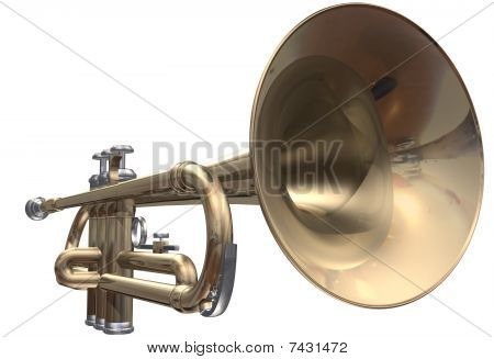 trumpet on a white