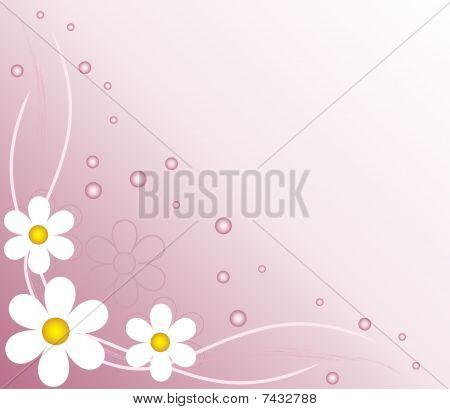 flower abstract backgroun