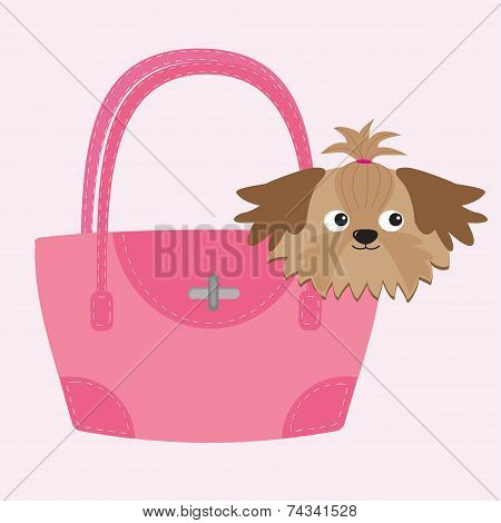 Little Glamour Tan Shih Tzu Dog In The Pink Bag.