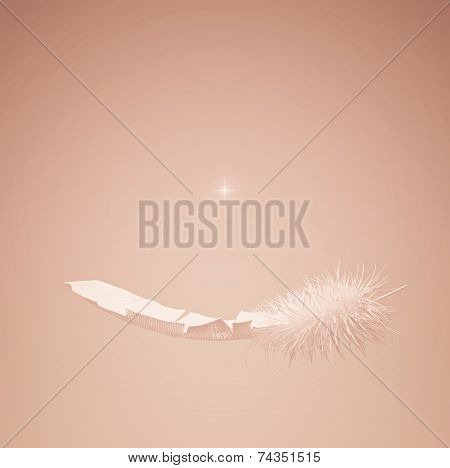 White Feather And Star