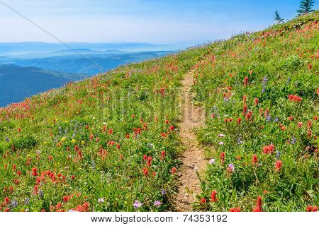 Trail to a mountan summit in British Columbia, Canada.