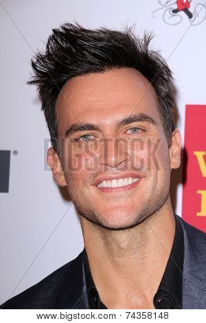 LOS ANGELES - OCT 17:  Cheyenne Jackson at the 10th Annual GLSEN Respect Awards at Regent Beverly Wilshire on October 17, 2014 in Beverly Hills, CA