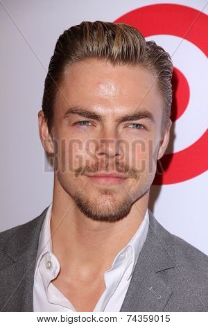 LOS ANGELES - OCT 17:  Derek Hough at the 10th Annual GLSEN Respect Awards at Regent Beverly Wilshire on October 17, 2014 in Beverly Hills, CA
