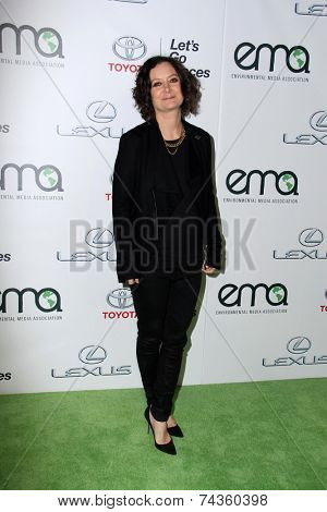 LOS ANGELES - OCT 18:  Sara Gilbert at the 2014 Environmental Media Awards at Warner Brothers Studios on October 18, 2014 in Burbank, CA