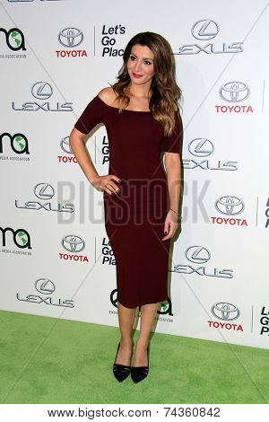 LOS ANGELES - OCT 18:  Nasim Pedrad at the 2014 Environmental Media Awards at Warner Brothers Studios on October 18, 2014 in Burbank, CA