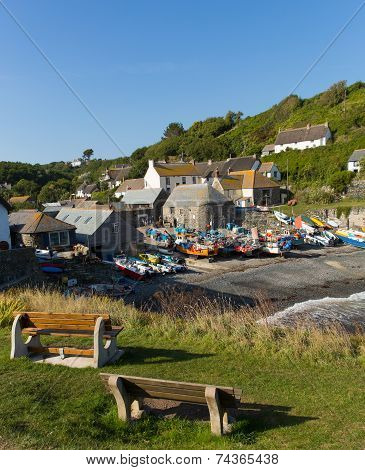 Cadgwith beach and boats Cornwall England UK on the Lizard Peninsula between The Lizard and Coverack