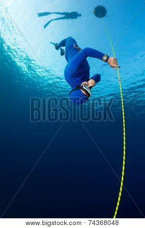 Free diver descending along the rope. Free immersion discipline