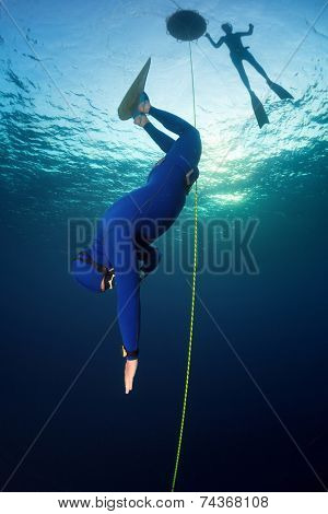 Underwater shot of the free diver in wet suit descending along the rope with mono fin. Constant weight discipline