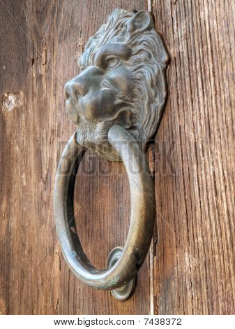 Lion Head Door Knocker.