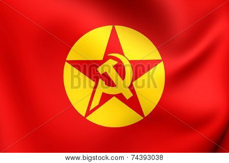 Flag Of Revolutionary People's Liberation Party-front (dhkp/c)