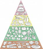 pic of food pyramid  - Vector Illustration of Food Pyramid showing the main Food Groups - JPG