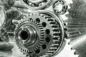 picture of bearings  - cogwheels - JPG