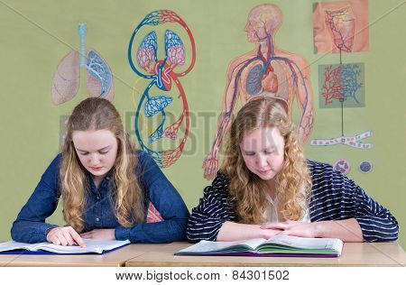 Two teenage girls reading text books