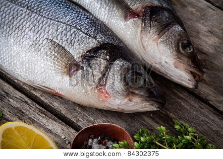 Two Raw Fresh Sea Bass Closeup On A Rustic Wooden Table