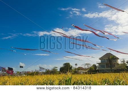Huge Balinese kites fly soar in the sky
