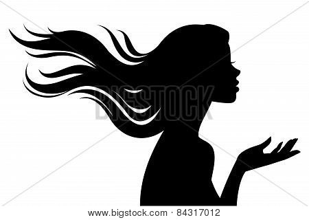 Silhouette Of Beautiful Girl In Profile With Long Hair