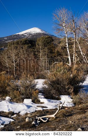 Bald Mountain Great Basin National Park Nevada United States