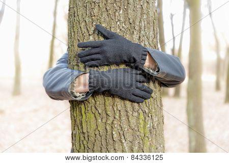 Hugging The Tree