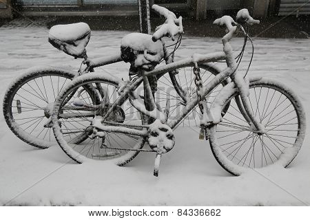 Bicycles under snow during massive Winter Storm Thor
