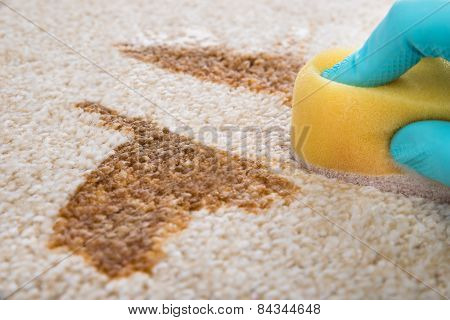 Person Cleaning Carpet With Sponge