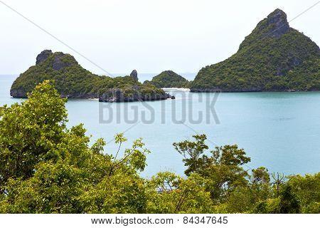 Boat Coastline Of A  And Tree  South China Sea Thailand Kho Phangan   Bay