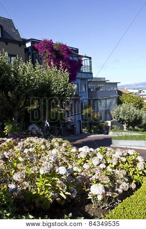 The Famous Lombard Street In San Francisco